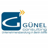 Günel Consulting