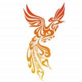 PhoenixHair