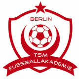TSM Fussballakademie 2013 e.V